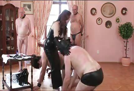 Lateksowa suka i jej usłużni pomocnicy