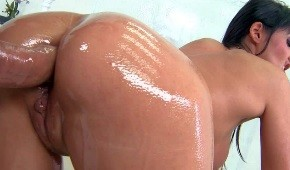 Oiled / Wet